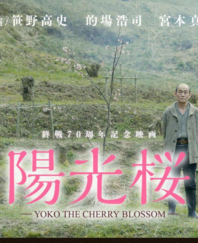 FireShot Screen Capture #088 - '映画『陽光桜-YOKO THE CHERRY BLOSSOM-』' - www_movie-yoko_com