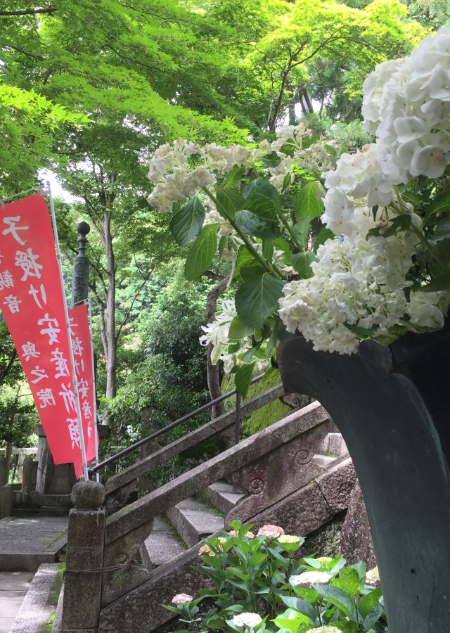 写真 2016-06-29 10 35 49