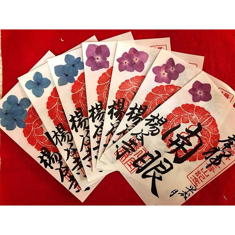 WP紫陽花